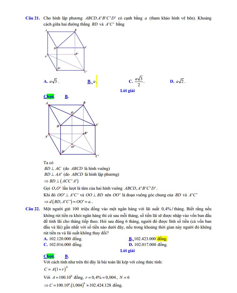 dap-anct6