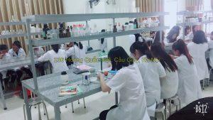 Phòng thực hành của khoa y dược