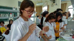 Sinh viên cao đẳng dược chăm chỉ học hành